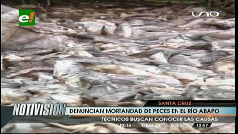 Zona de Abapó: Expertos investigan por qué murieron los peces en ... - eju.tv