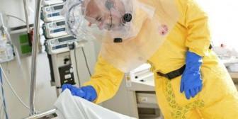 Ébola: Los científicos descubren cómo se originó el brote actual