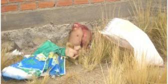 Hallan miembros superiores de joven descuartizado en Oruro
