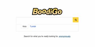 Boodigo, un Google sólo y para porno