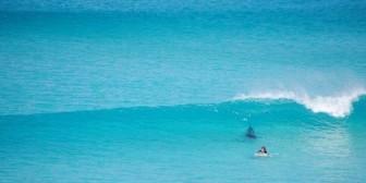 Australia: Surfista escapa de un tiburón blanco de tres metros