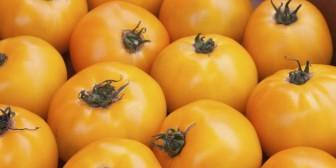 7 alimentos amarillos que deberías estar consumiendo
