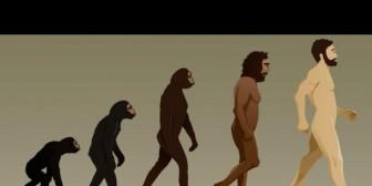 ¿Cómo evolucionará el ser humano en el futuro? Así te lo explican