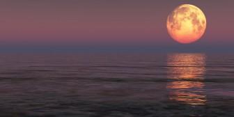 ¿Por qué le echamos la culpa a la Luna?