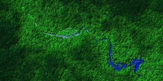 ¿Cómo el desierto del Sahara mantiene viva a la selva del Amazonas?