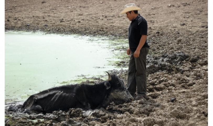 triste. Existen zonas, como el chaco boliviano que casi todos los años deben soportar la escasez de agua.