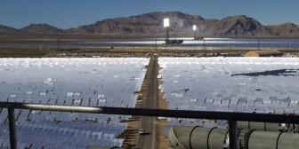 EEUU: Mueren más de 3.500 aves a causa de la mayor planta solar del mundo