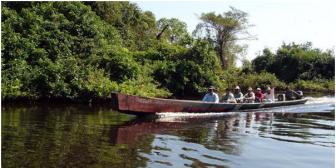 Buscan sobrevivientes de camión que volcó en el río Sasama del Tipnis