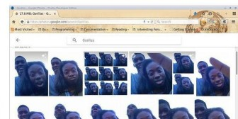 Google confundió a dos negros con dos gorilas (fotos)