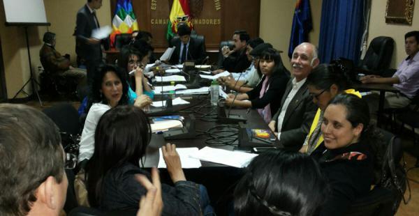 Comisión Mixta de Constitución de la ALP
