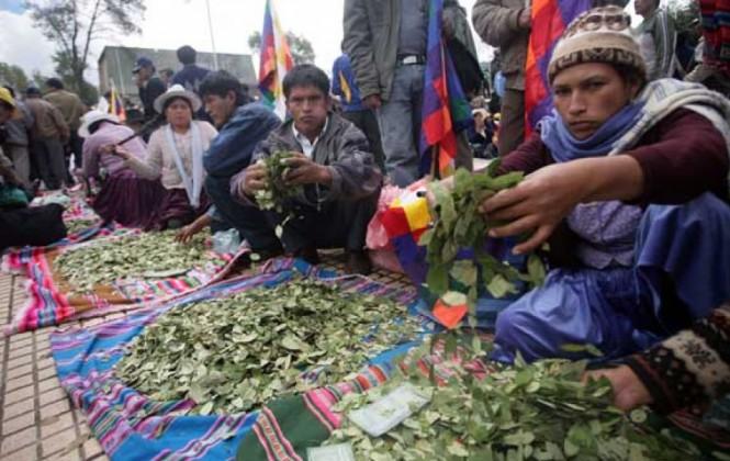 Cocaleros anuncian bloqueo a Yungas desde el miércoles tras fracaso del diálogo
