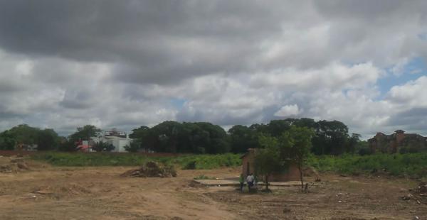 La Alcaldía ha anunciado procesos contras las personas que hayan participado en la tala de árboles del ex jardín botánico