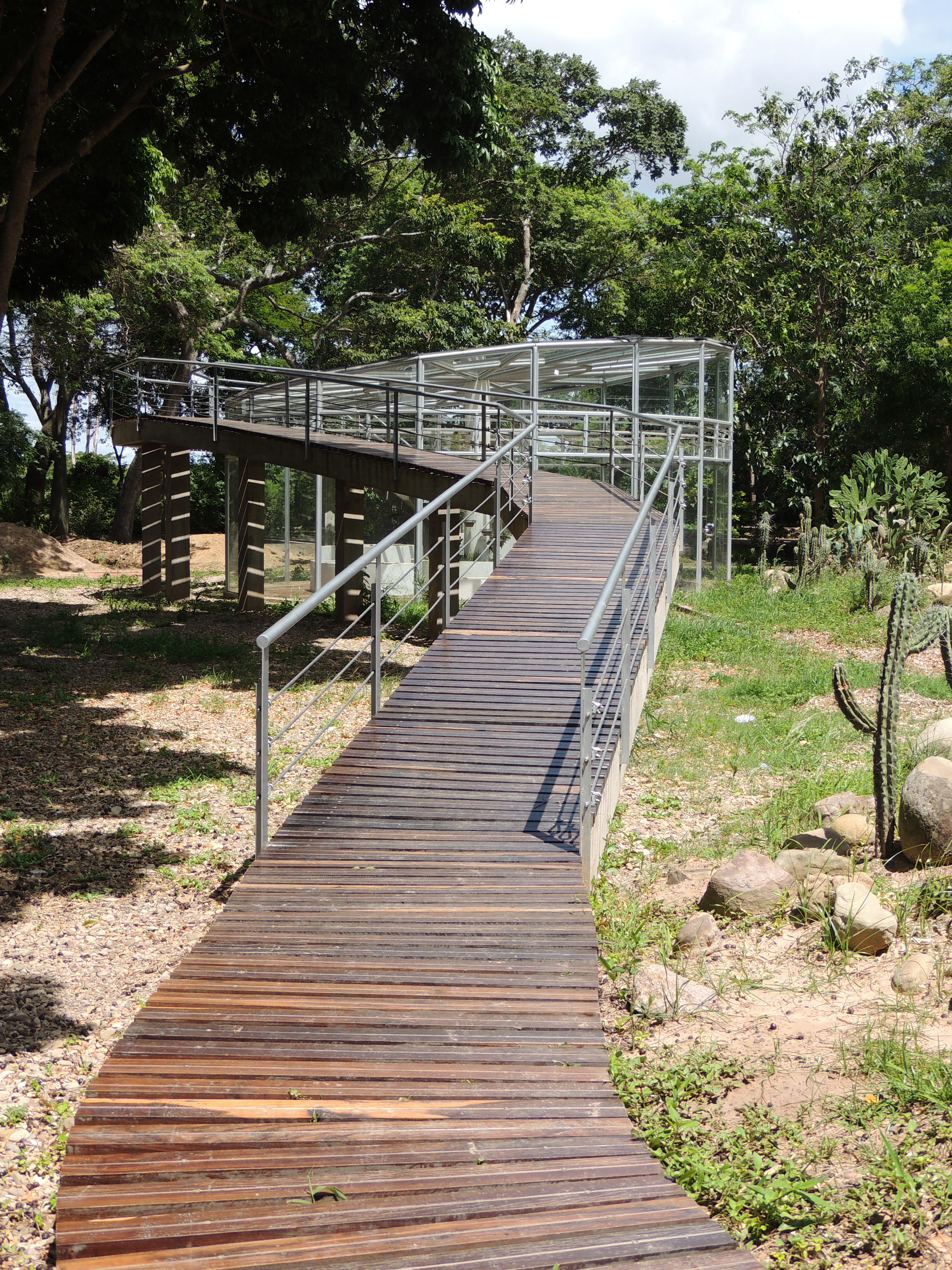 jardin botanico5