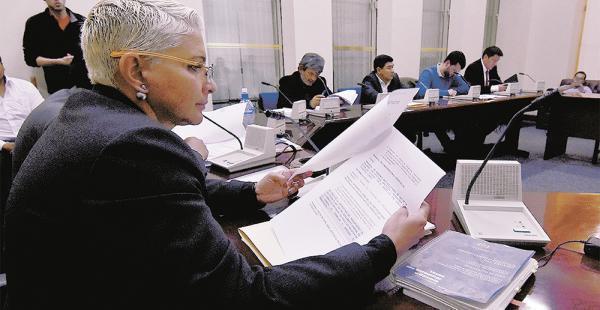 La presidenta de la comisión legislativa, Susana Rivero (MAS), recibió la documentación de la CAMC