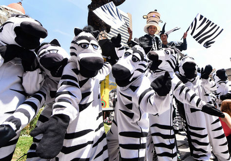 El Proyecto Cebras comenzó el 19 de noviembre de 2001. Foto: La Razón