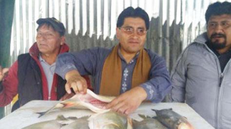 El ministro César Cocarico con pescados que serán puestos a la venta en una feria en La Paz, junto a otras variedades.