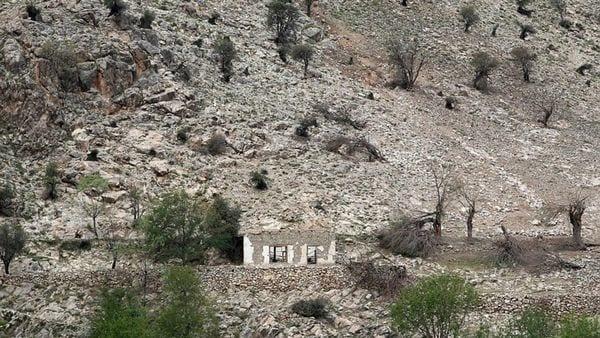 Árboles quemados y estructuras destruidas tras el impacto de la GBU-43/B