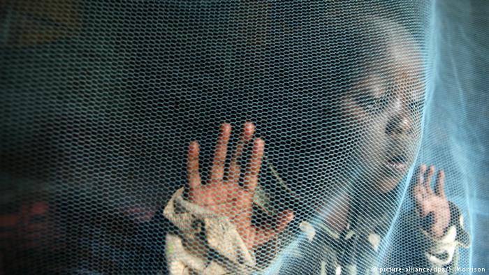 Moskitonetz gegen Malaria (picture-alliance/dpa/S. Morrison)