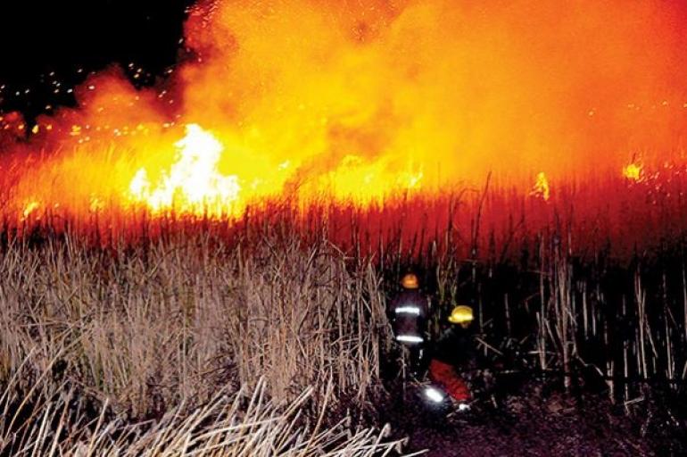 Resultado de imagen de incendios en municipios de Cochabamba