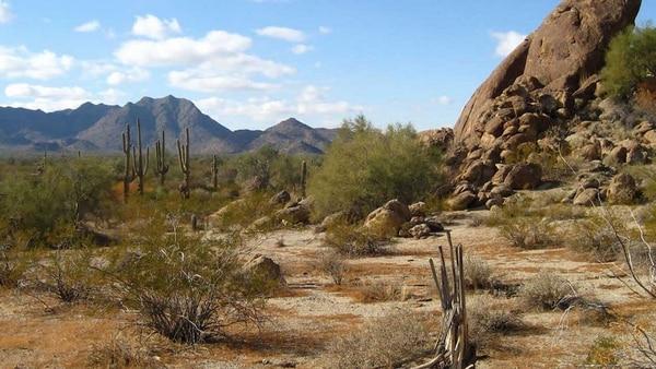 La zona se encuentra en el norte de México.