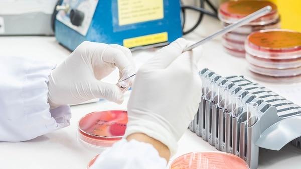 Para disminuir la resistencia, recomiendan evitar el mal uso de antibióticos y promover su empleo responsable (Getty)