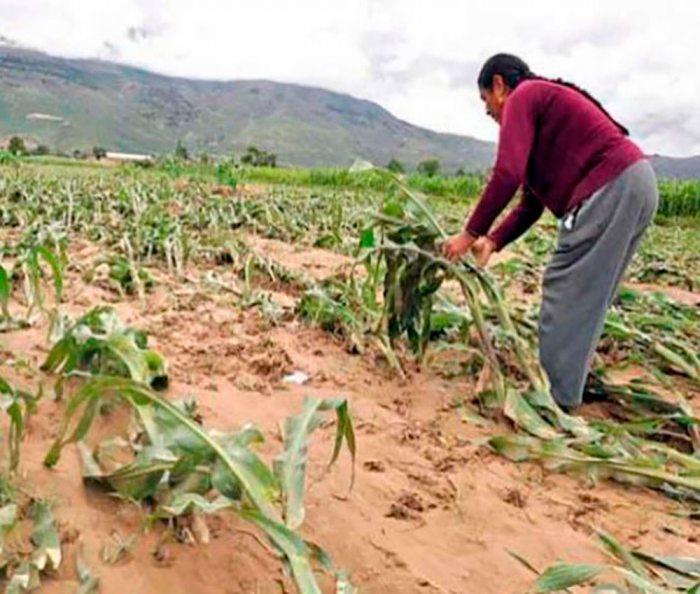 Pobladores desconocen normas para prevenir desastres naturales.