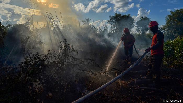 Indonesien Feuer (AFP/Wahyudi)