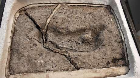 Huella antigua de un pie humano descubierta en 2010 en el sitio arqueológico de Pilaluco, en Osorno, Chile