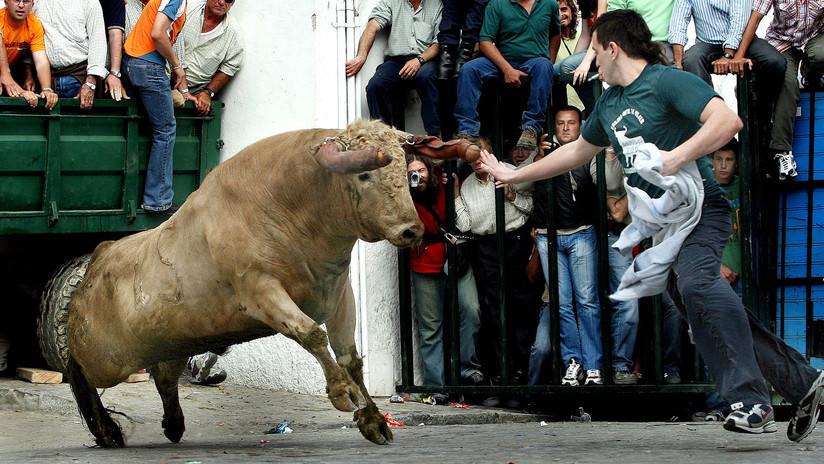 Un toro embiste y mata a un hombre de 74 años en España