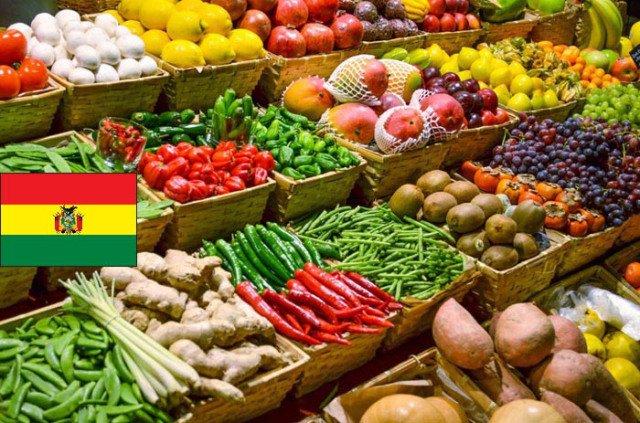 Bolivia invertirá más de 40 millones de dólares en alimentos ...
