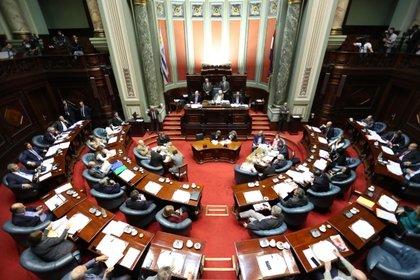 Vista general de la Cámara de Senadores del Parlamento de Uruguay. EFE/Raúl Martínez/Archivo