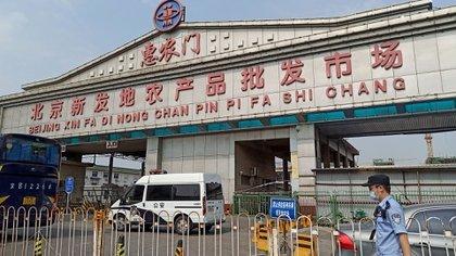 Xinfadi es un complejo de almacenes y galpones comerciales que abarca un área del tamaño de casi 160 campos de fútbol y es 20 veces más grande que el mercado de marisco de Wuhan donde se identificó por primera vez el coronavirus (Reuters)