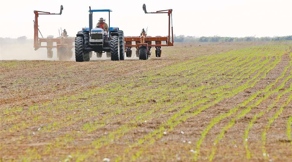 El agro pide certidumbre para seguir produciendo