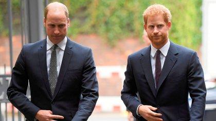 Los hermanos William y Harry están distanciados desde el casamiento del duque de Sussex con Meghan Markle (Shutterstock)