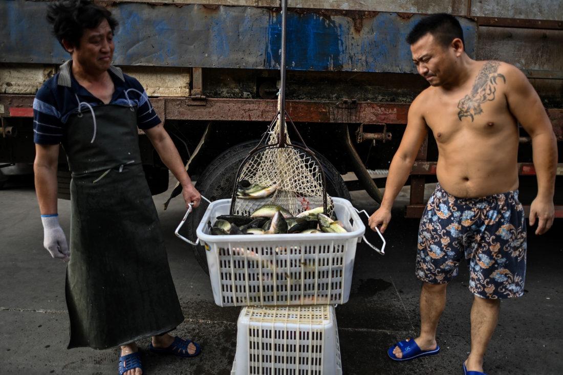 Entre las primeras personas contaminadas en Wuhan, muchas trabajaban en el mercado de productos frescos Huanan, que fue cerrado por las autoridades a comienzos de enero. Librado al abandono detrás de altas rejas azules, no ha reabierto. Algunos vendedores reinstalaron sus puestos más lejos