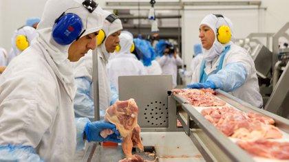 Crisis en la exportación de carne de pollo en Brasil