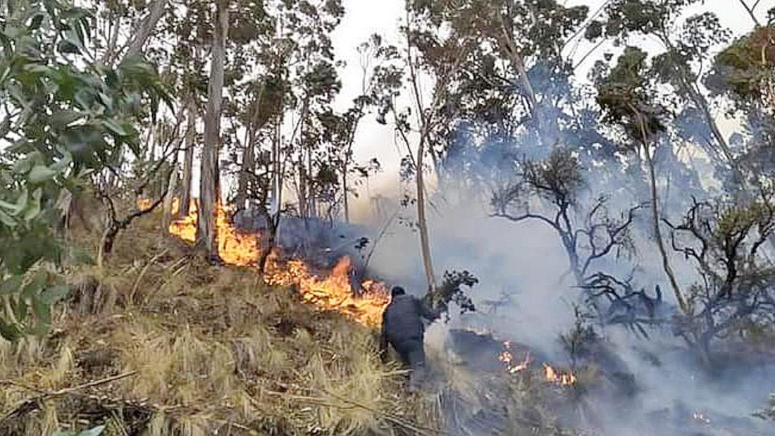 Incendio en Tiraque. CORTESÍA