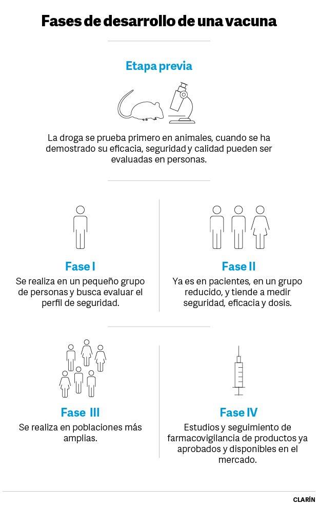 Fases de desarrollo de una vacuna