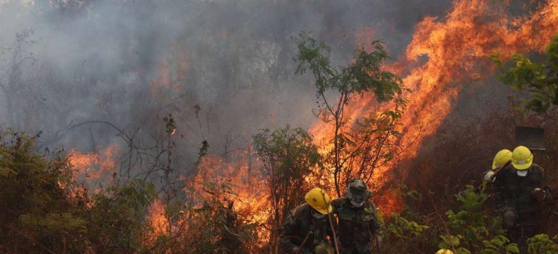 Desde marzo se viene registrando incendios en Santa Cruz/Foto: Jorge Uechi