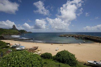 La autorización para los turistas curados será el primer paso para la reactivación del turismo en Fernando de Noronha, TEMPprincipal fuente de ingresos del archipiélago de poco más de 3.000 habitantes (EFE)