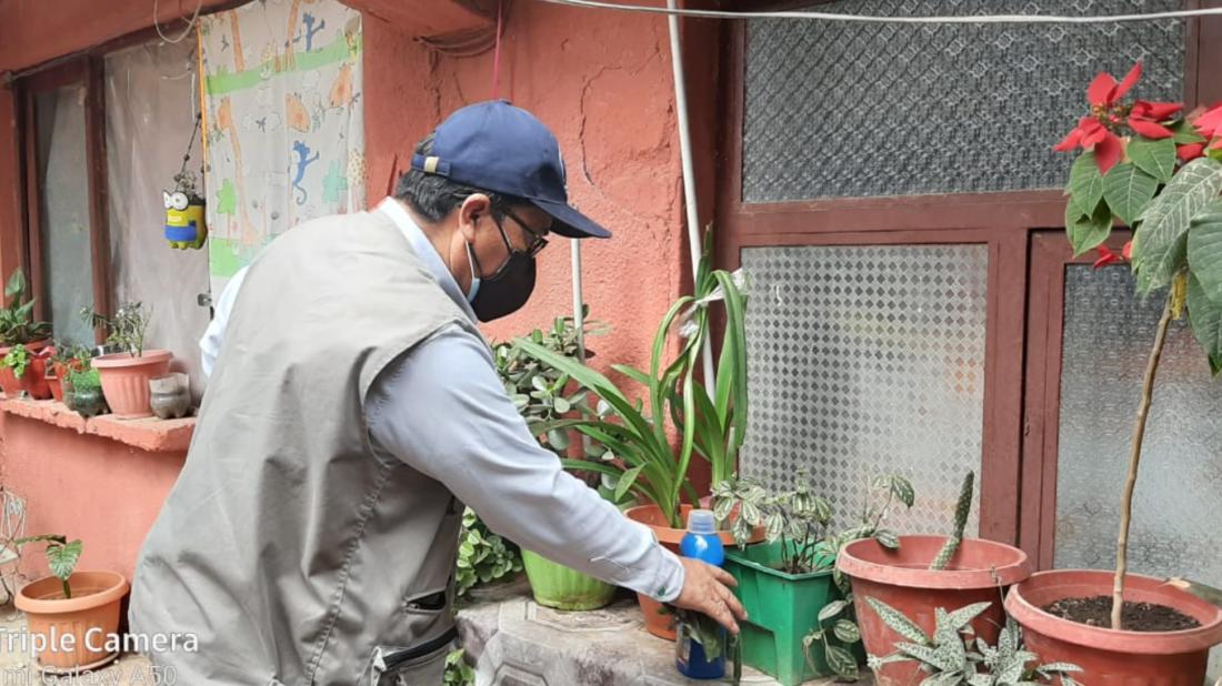 """Dengue: Arranca el plan """"Rompe huevos"""" para combatir la propagación del Aedes Aegypti en Cochabamba - Cochabamba - Opinión Bolivia"""