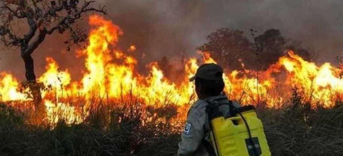 Incendios en la Chiquitanía