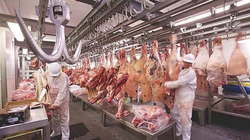 El mercado peruano representa el 20% de las exportaciones de carne bovina boliviana