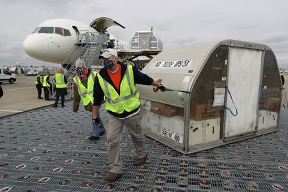Empleados acarrean una de dos cargas de vacunas en la rampa del aeropuerto Muhammad Ali de Louisville, Kentucky (Michael Clevenger/Pool via REUTERS)