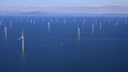 Por estar lejos de la costa, las turbinas pueden ser más grandes que las que se instalan en tierra, y por eso llegar a velocidades de vientos más altas. (REUTERS/Phil Noble)