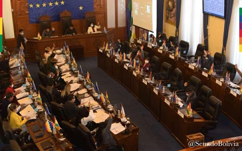 Senado en sesión/Foto: ABI