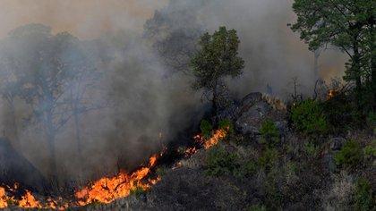Vista de un incendio forestal, el 13 de abril de 2021, en el poblado de Tepoztlán, en el estado de Morelos, México (EFE)