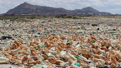 Fotografía que muestra la contaminación en el lago Uru Uru en Oruro, Bolivia (EFE)