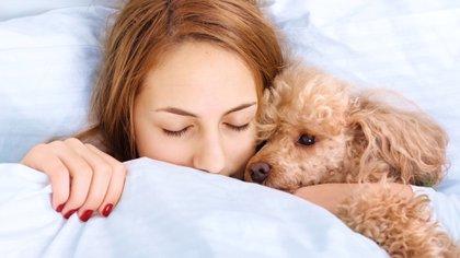 Dormir con la mascota puede ser la mejor opción para conciliar el sueño