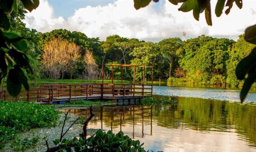 Solicitan 200 hectáreas del Jardín Botánico para entregar a 2.500 familias